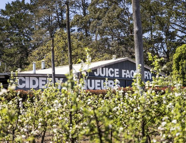 Stanthorpe-Attractions-Suttons-Juice-Factory